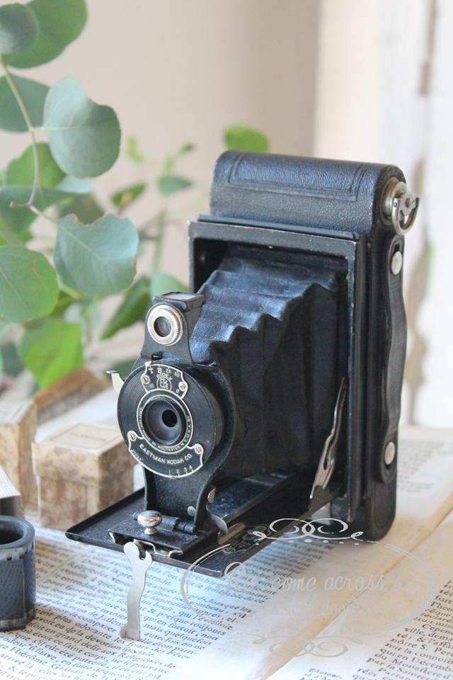 フランスの古いのイーストマンコダックの蛇腹式カメラ